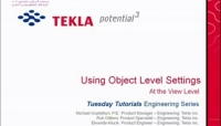 Tekla USA Webinars - Drawing Object-Level Settings Clip 1 of 4